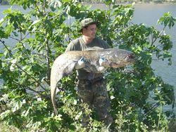 Angler am Schwielochsee